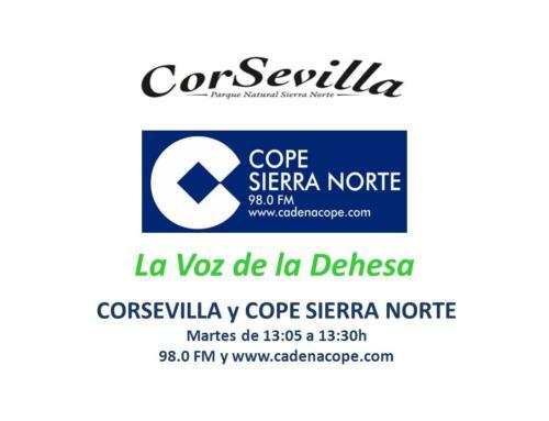 LA VOZ DE LA DEHESA. Primer programa coordinado por CORSEVILLA y COPE SIERRA NORTE.