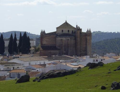 Los Ayuntamientos de la SIERRA MORENA DE SEVILLA suspenden todos los festejos hasta el 15 de septiembre.