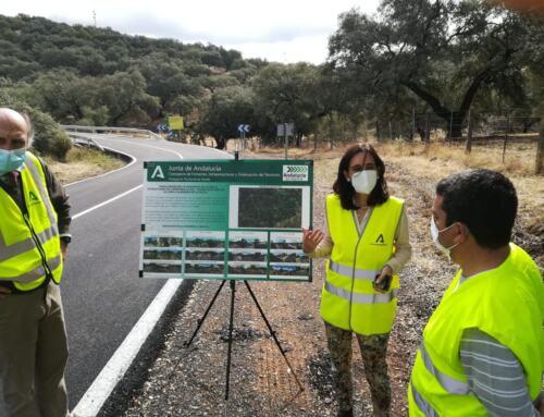 La delegada de Fomento de la Junta de Andalucía supervisa las obras de mejora de seguridad vial en Almadén de la Plata y El Real de la Jara.